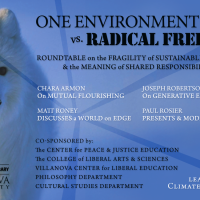 One Environment vs. Radical Freedom