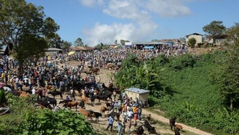 USAID_Haiti_photo
